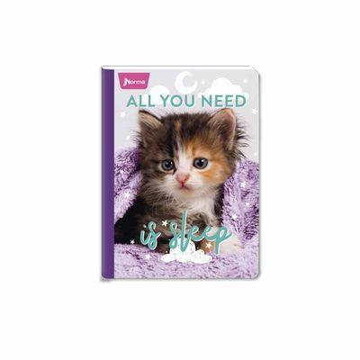 Cuaderno-Cats