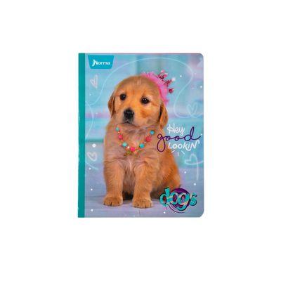 Cuaderno-Norma-Dogs-Labrador