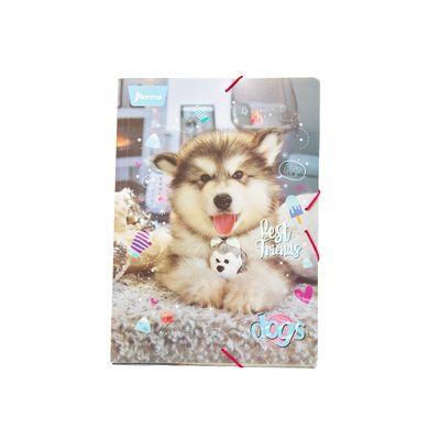 Carpeta-Dogs